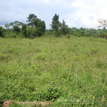 200 sq yd plot for sale at hunter road, warangal
