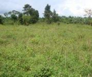 200 sq yd plot for sale at hunter road, warangal