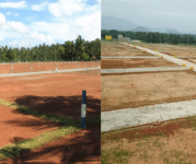 Land for Sale in torredu,Rajahmundry